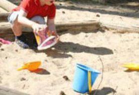 Vaikų smėlio dėžėse - parazitinių ligų židiniai