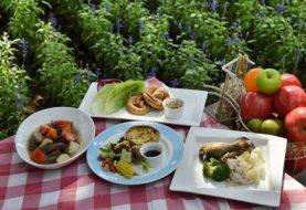 Kokį maistą rinktis vasaros iškyloms