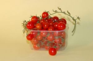 Koks plastikas tinkamiausias sąlyčiui su maistu?