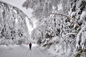 Šalčio banga: svarbu vartoti pakankamai skysčių