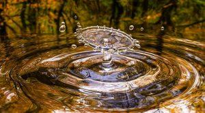 Kaip vanduo gali apsisaugoti nuo ore tykančių virusų?